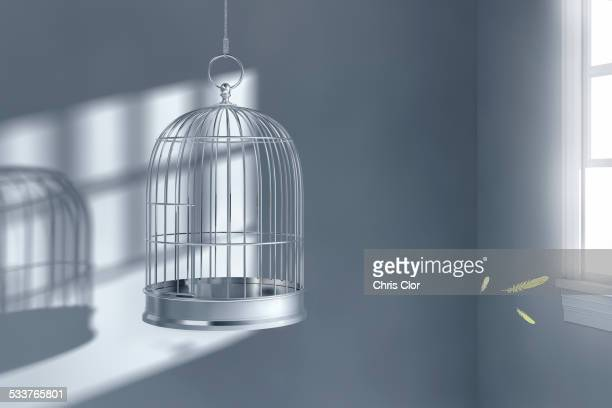 Feathers floating near empty birdcage