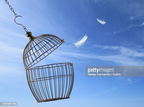 feathers moving out of cage against blue sky - 鳥篭 ストックフォトと画像