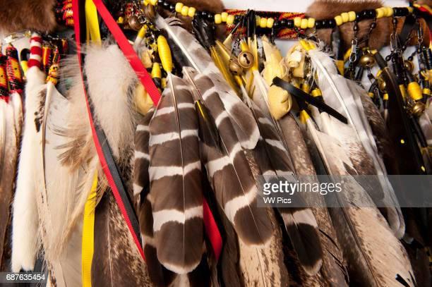 Feathers of the Lumbee Tribe Regalia