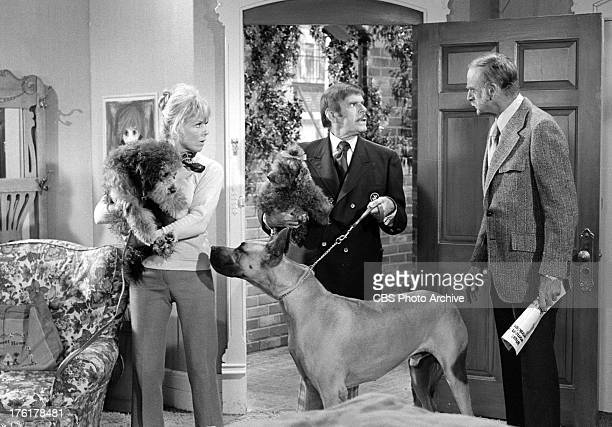 SHOW featuring Doris Day Billy De Wolfe and John Dehner in episode 'It's a Dog's Life' Image dated October 4 1972