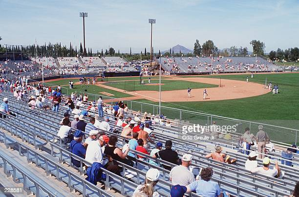 A SPRINKLING OF FANS WATCH THE OAKLAND ATHLETICS DURING SPRING TRAINING IN PHOENIX, ARIZONA.