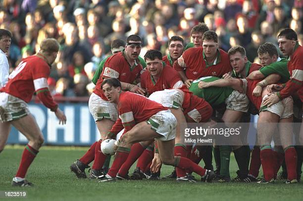 Scrum half Rupert Moon of Wales prepares to feed his team mate Neil Jenkins during their Five Nations match against Ireland in Dublin Ireland Wales...