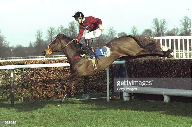 Dean Gallagher riding Aardwolf in the Manor Novices Steeple Chase at Kempton race course Mandatory Credit Allsport UK /Allsport