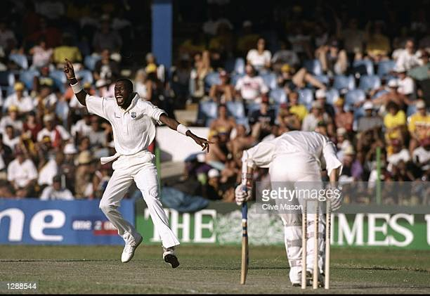 Curtly Ambrose of the West Indies celebrates after he takes the wicket of England Captain Mike Atherton during the Third Test match at the Queen's...