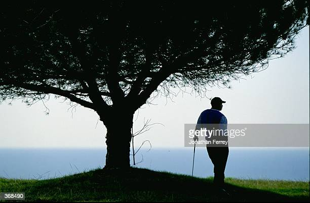 Silhouetted Tiger Woods stands under a tree as he waits during the Buick Inviational at the Torrey Pines Golf Course in La Jolla, California....