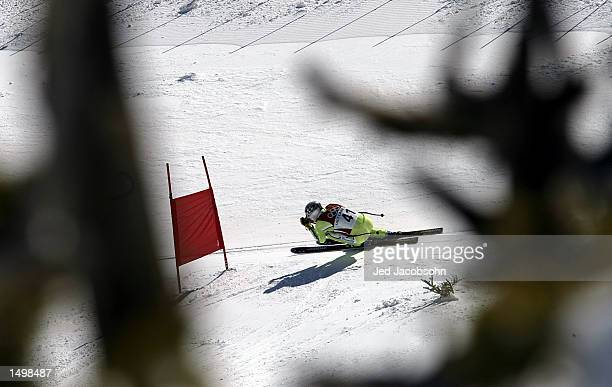 Andrej Jerman of Slovenia at speed in the men's downhill during the Salt Lake City Winter Olympic Games at the Snowbasin ski area in Ogden Utah...