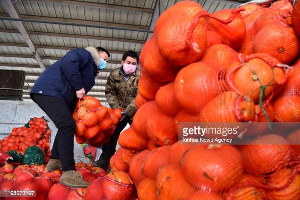 Feb. 4, 2020 -- Workers arrange vegetables at Wanbang wholesale market of agricultural products in Zhongmu County of Zhengzhou, central China's Henan...