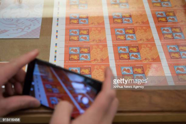 BUDAPEST Feb 7 2018 A guest takes pictures of the zodiac stamp in the honor of the Year of the Dog at the Hungarian Stamp Museum in Budapest Hungary...