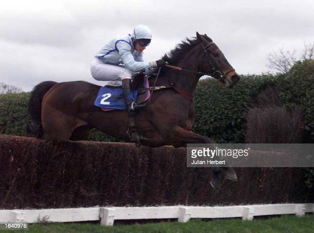 Timmy Murphy and Dawn Leader clear the last fence at Sandown Park before going on to score an easy victory in The Aldaniti Novices Chase Mandatory...