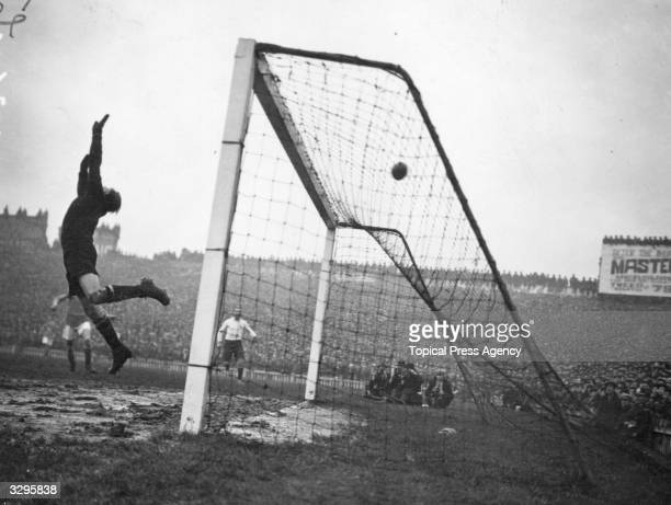 The goalkeeper in action during a match between Cardiff City FC and Tottenham Hotspur FC at Cardiff