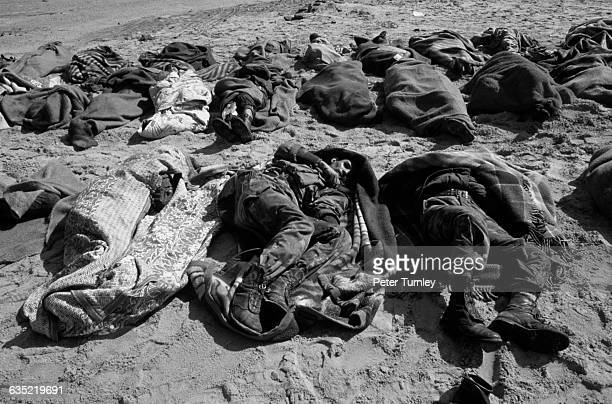 Dead Iraqi soldiers before burial by a US Graves Detail, killed on or near the Mile of Death, on the northern outskirts of Kuwait City. On this...