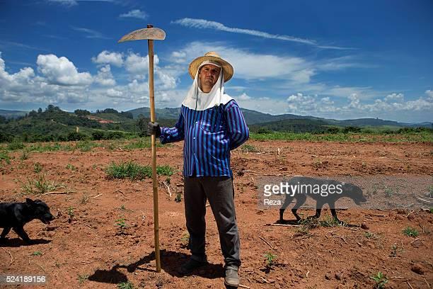 February 2013 Farm of Sao Roque Curitiba Marian Pocos de Caldas Minas Gerais Brazil Adilson Aparecido de Souza a farmer of the coffee farm of Sao...