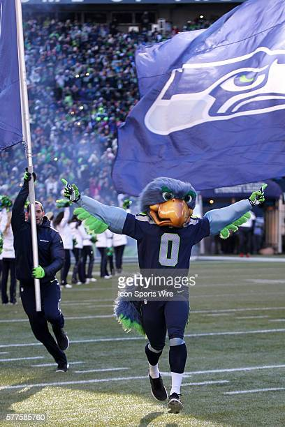 Seattle Seahawks mascot Blitz lead the players out on the field Seattle Seahawks players and 12th man fans celebrated bringing the Lombardi trophy...