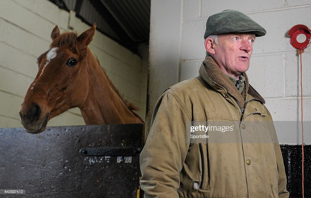 Willie Mullins Stable Visit ahead of Cheltenham 2016 : News Photo