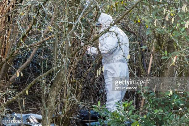 17 February 2019 BadenWuerttemberg Weinstadt A member of the forensic team is standing in a place where a corpse was found during extinguishing work...
