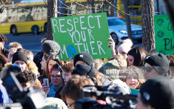 Pupils demonstrate for climate protection In many cities students take to the streets under the motto Fridays for Future to protest for more climate...