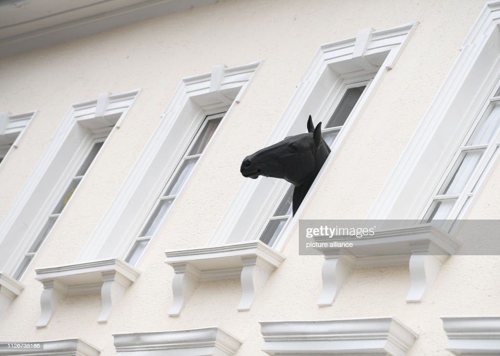 DEU: DEU: Horse Head At The Window