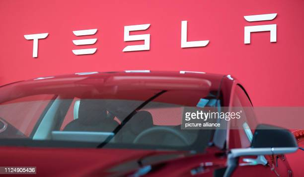 The writing Tesla stands on a wall in a Tesla Service Center in Frankfurt · above a Tesla Model 3 Photo Silas Stein/dpa