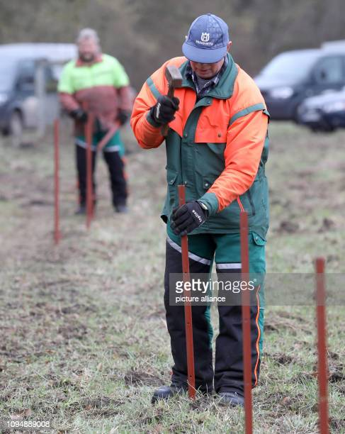 07 February 2019 MecklenburgWestern Pomerania Bahlenhüschen In the Forsthof Bahlenhüschen the erection of a fence against African swine fever is...
