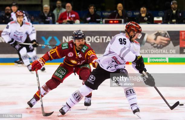 26 February 2019 North RhineWestphalia Düsseldorf Ice hockey DEL Düsseldorfer EG Kölner Haie main round 38th matchday in the ISS Dome Cologne's Fabio...