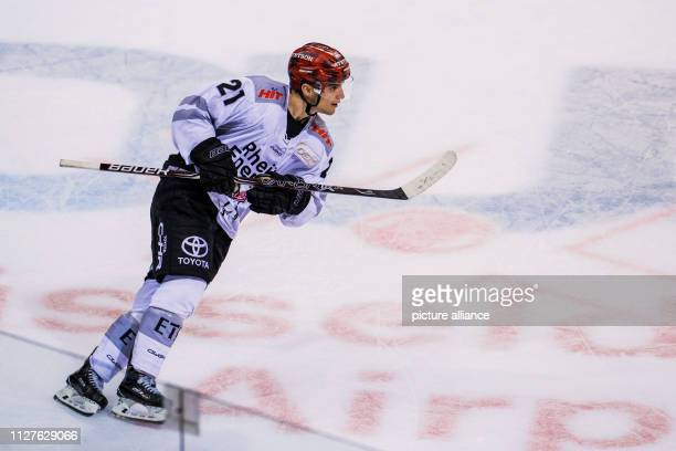 26 February 2019 North RhineWestphalia Düsseldorf Ice hockey DEL Düsseldorfer EG Kölner Haie main round 38th matchday in the ISS Dome Cologne's...