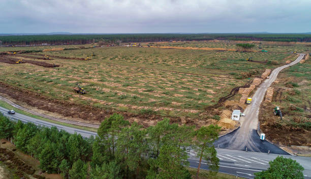 DEU: Clearing Of Land For Tesla Factory Before Completion
