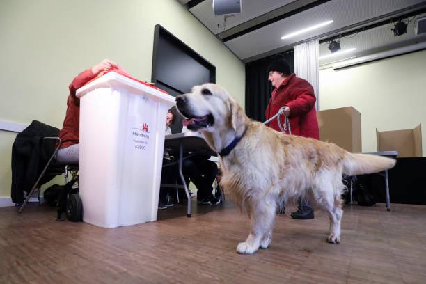 DEU: Elections In Hamburg
