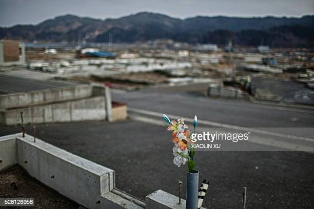 February 24 Kirikiri Otsuchi Iwate Japan In the village after the tsunami a bind of plastic flowers was putted on the newly built house foundations