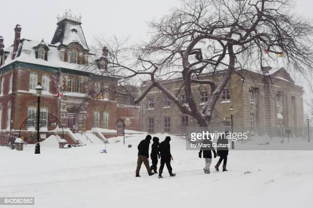 February blizzard, Fredericton,  New Brunswick, Canada
