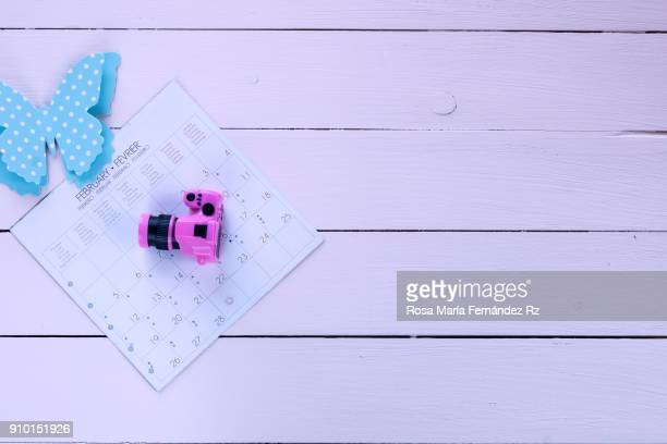 February calendar sheet, blue paper butterly and miniature camera on wooden background. Top view and copy space