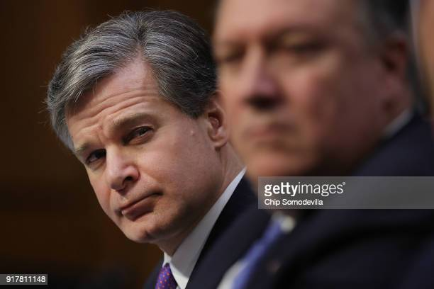 Federal Bureau of Investigation Director Christopher Wray Central Intelligence Agency Director Mike Pompeo and other intelligence community officials...