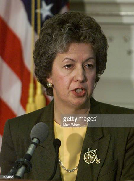 Federal Bureau of Prisons Director Kathleen Hawk Sawyer discusses the execution of Timothy McVeigh at the Justice Department April 12 2001 in...