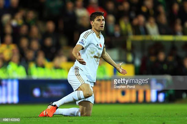 Federico Fernandez of Swansea City reacts during the Barclays Premier League match between Norwich City and Swansea City at Carrow Road on November 7...