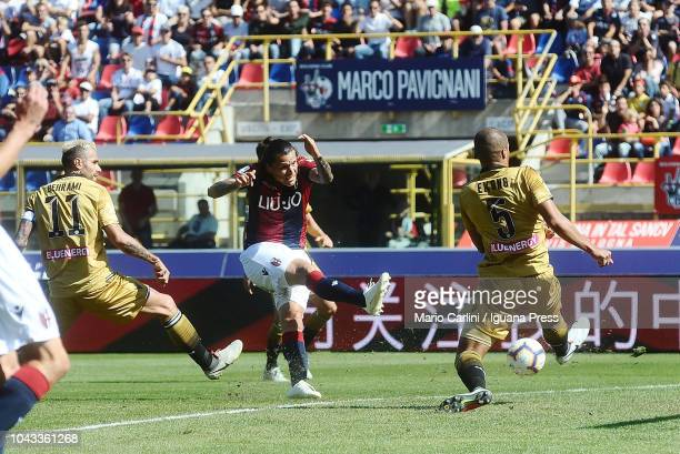 Federico Santander of Bologna FC scores a goal during the Serie A match between Bologna FC and Udinese at Stadio Renato Dall'Ara on September 30 2018...