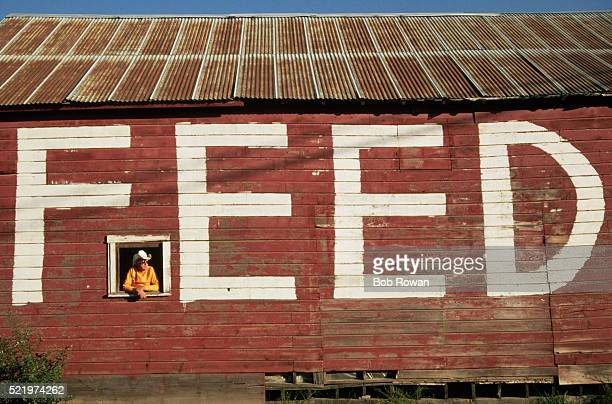 'Feed' Painted on Side of Feed Store