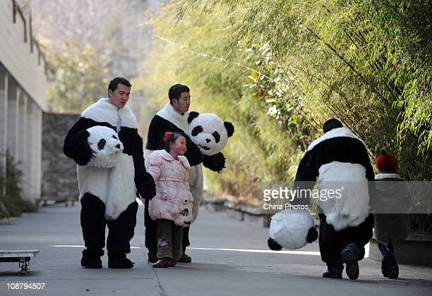 Feeders dressed as giant pandas play with their children at the China Conservation and Research Center for the Giant Panda on February 3 2011 in...