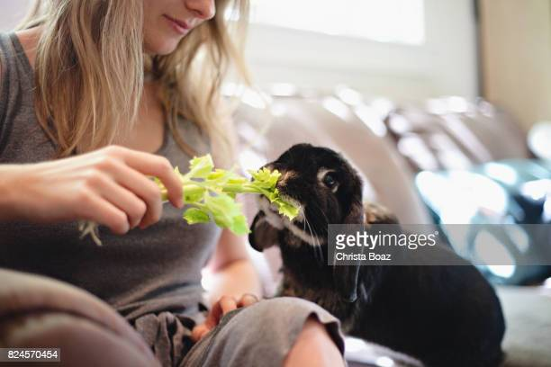 Feeding a Rabbit Celery