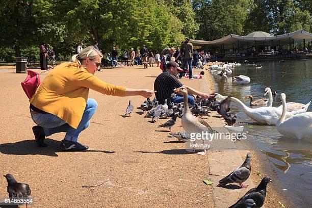 Feeding birds at The Serpentine in Hyde Park, London