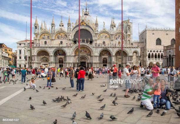 feeding pigeons on st. mark's square, venice, italy. - basilica di san marco foto e immagini stock