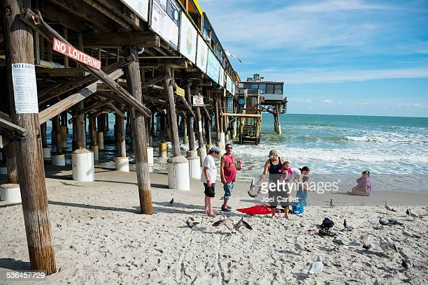 feeding seagulls beside the cocoa beach pier - cocoa beach stock pictures, royalty-free photos & images
