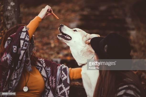 Utfodring Siberian Husky