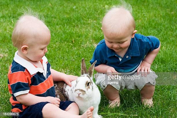 feeding the bunny