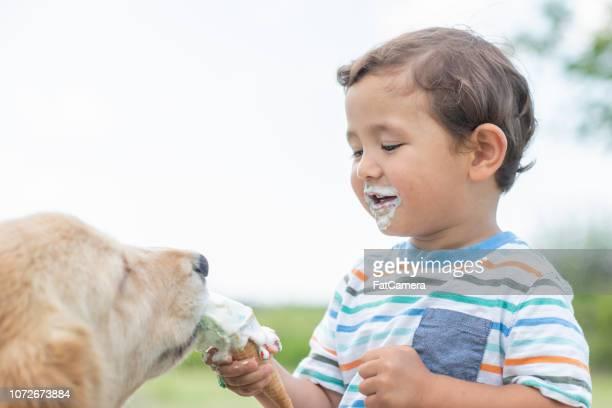 voeding van de hond - kegel stockfoto's en -beelden