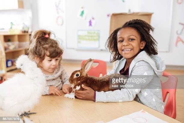 Feeding the rabbit in preschool lesson