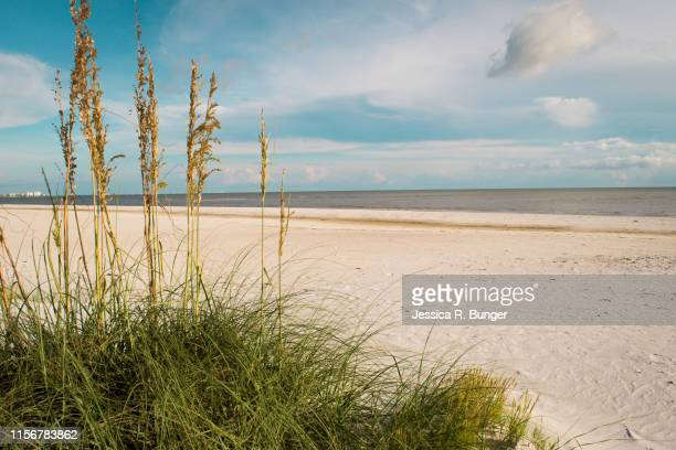 feeling just beachy - fort myers beach stock pictures, royalty-free photos & images