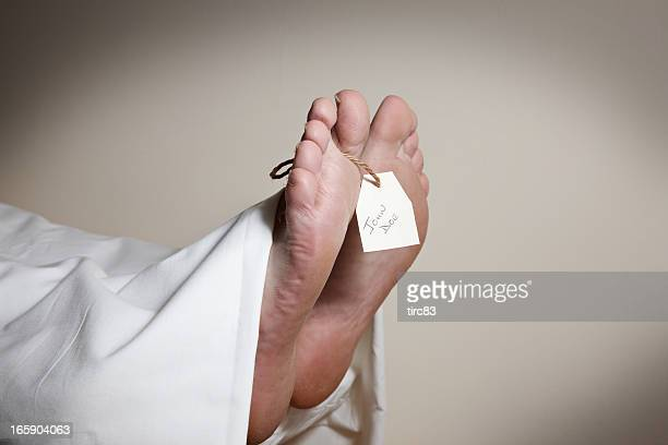 cuadrados y etiqueta de desconocida cuerpo, john doe en mortuary - morgue fotografías e imágenes de stock
