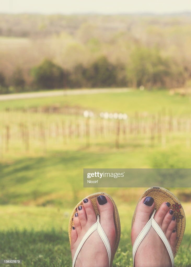 Feet at vineyard : Stock Photo