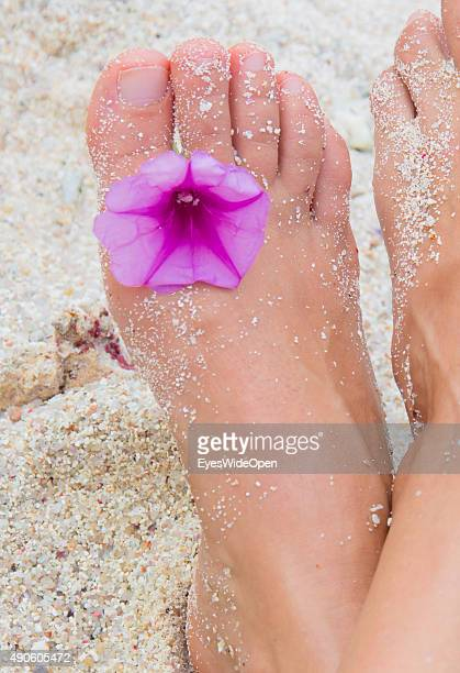 Feet of a woman with flower in the toes at white sandy Banana Beach on September 27, 2015 in La Passe, La Digue, Seychelles.