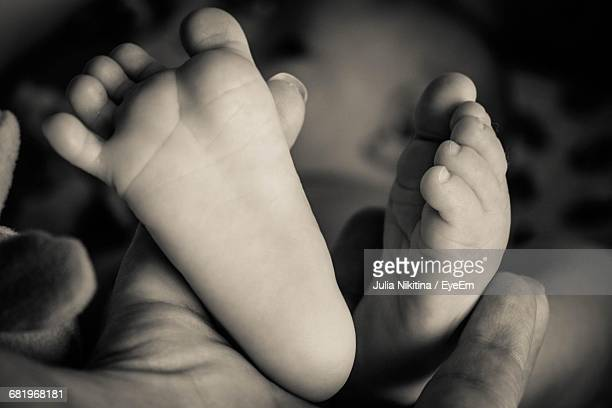 feet of baby - nikitina stock pictures, royalty-free photos & images