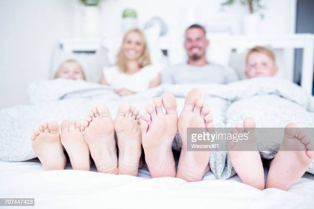 feet of family lying in bed - male feet stock photos and pictures